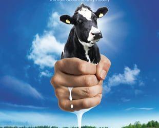Melk, wie is er niet groot mee geworden?